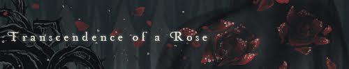 Transcendence-of-Rose-Banner